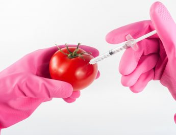 dieta come farmaco - siringa - mela