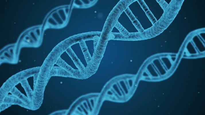 gene GATM
