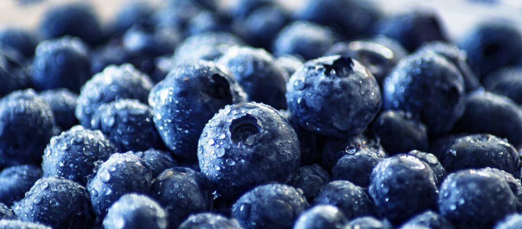 Frutti di bosco per curare le malattie intestinali