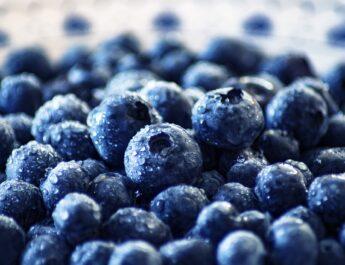 mirtilli, frutti di bosco, blueberry